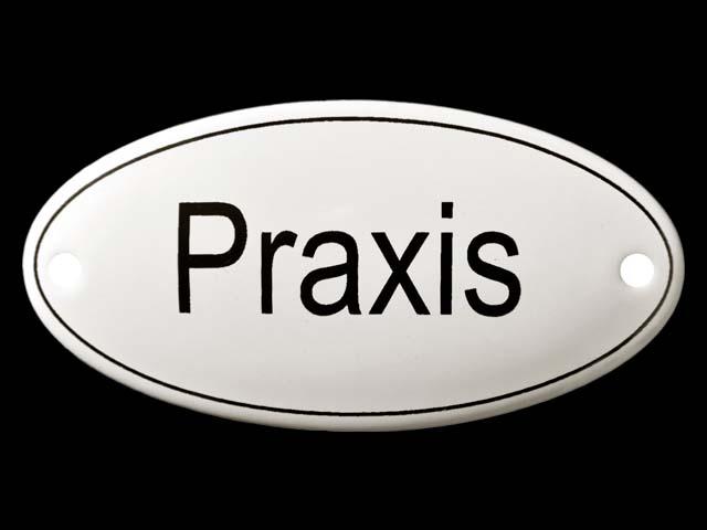 Praxis_2
